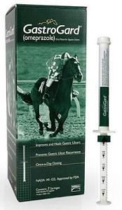 Gastorgard Oral Paste Syringe