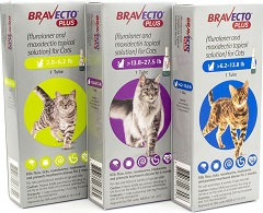 Bravecto PLUS Topical for cats