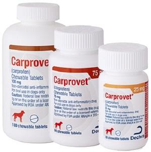 Carprovet Chew Tab - Carprofen