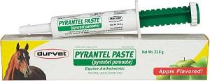 Pyrantel Pamoate Paste