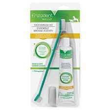 Enzadent Toothbrush Kit