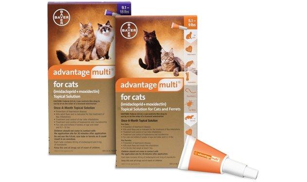 Advantage Multi Cat
