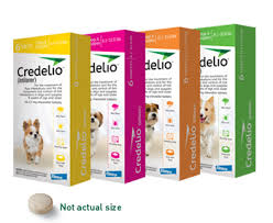 Credelio Chewable Tablets