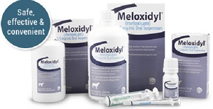 Meloxidyl Suspension
