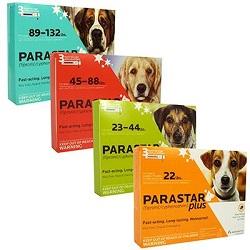 Parastar Plus Dog
