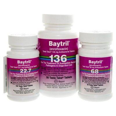 Baytril Tablets