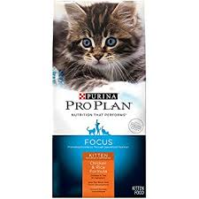 Purina Pro Plan Kitten Dry