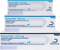 Clavacillin Tablet