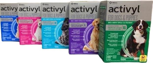 Activyl Dogs
